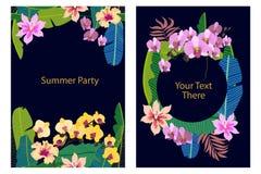 Insieme delle carte con le piante tropicali sul fondo di contrasto Immagini Stock