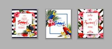 Insieme delle carte di estate, degli ambiti di provenienza di vacanze estive delle coperture con flowersand tropicale un tucano e Fotografia Stock