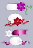 Insieme delle cartoline d'auguri eleganti con i nastri ed i fiori di seta Fotografia Stock