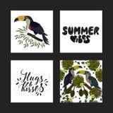Insieme delle cartoline tropicali di estate con le illustrazioni tropicali dettagliate e le citazioni disegnate a mano dell'iscri Immagine Stock Libera da Diritti