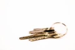 Insieme delle chiavi con fondo bianco Fotografia Stock Libera da Diritti