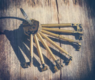 Insieme delle chiavi primarie per le serrature Fotografie Stock Libere da Diritti