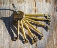 Insieme delle chiavi primarie per le serrature Immagine Stock Libera da Diritti