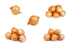 Insieme delle cipolle, su bianco Immagine Stock