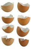 Insieme delle coperture dell'uovo Immagine Stock Libera da Diritti