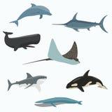 Insieme delle creature del mare Fotografia Stock