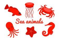 Insieme delle creature del mare Animali di mare rossi del fumetto isolati su fondo bianco Vettore Fotografia Stock