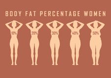 Insieme delle donne piane prima e dopo l'illustrazione di vettore di dieta Ragazza grassa e sottile Immagine Stock Libera da Diritti