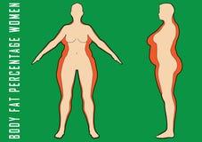 Insieme delle donne piane prima e dopo l'illustrazione di vettore di dieta Ragazza grassa e sottile Immagine Stock