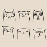 Insieme delle emozioni del fronte del gatto Fotografie Stock