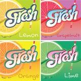 Insieme delle etichette con frutta e succo fresco Immagini Stock
