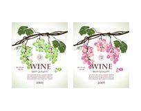 Insieme delle etichette concettuali per bianco e vino rosato Immagine Stock