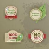 Insieme delle etichette dell'annata con le tematiche ecologiche Fotografia Stock Libera da Diritti