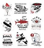 Insieme delle etichette dell'annata, del logo e degli elementi praticanti il surfing di progettazione Fotografia Stock