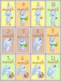 Insieme delle etichette di saluto di mese con i conigli svegli del bambino, animali del bambino illustrazione vettoriale
