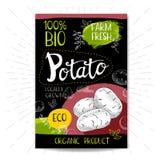 Insieme delle etichette disegnate a mano alimento, spezie Immagine Stock
