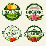 Insieme delle etichette fresche & organiche Fotografie Stock Libere da Diritti