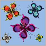Insieme delle farfalle Fotografia Stock