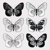 Insieme delle farfalle in bianco e nero, a mano disegno Illustr di vettore Immagine Stock