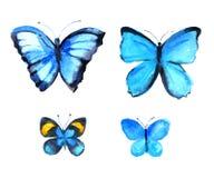 Insieme delle farfalle blu, illustrazione dell'acquerello su fondo bianco Fotografia Stock Libera da Diritti