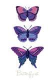 Insieme delle farfalle decorative di vettore Fotografia Stock Libera da Diritti