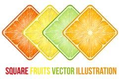 Insieme delle fette quadrate di frutti delle icone Vettore Immagini Stock Libere da Diritti