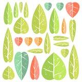 Insieme delle foglie Immagini Stock