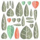 Insieme delle foglie Fotografie Stock