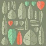 Insieme delle foglie Fotografia Stock Libera da Diritti