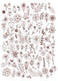 Insieme delle foglie bianche nere dei fiori di scarabocchio Elementi disegnati a mano di disegno Brown & bianco annata royalty illustrazione gratis