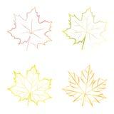 Insieme delle foglie di acero variopinte di vettore Immagini Stock Libere da Diritti