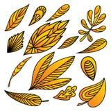 Insieme delle foglie di autunno gialle astratte Fotografia Stock