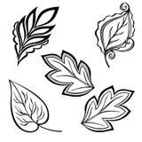Insieme delle foglie di Deco Fotografia Stock