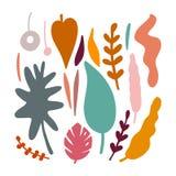 Insieme delle foglie tropicali astratte illustrazione vettoriale