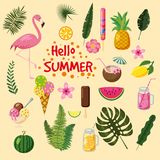 Insieme delle foglie tropicali, delle icone sveglie di estate, del gelato, dell'uccello del fenicottero e dei fiori tropicali, st Immagini Stock Libere da Diritti
