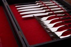Insieme delle forcelle e dei coltelli in un caso Immagini Stock Libere da Diritti