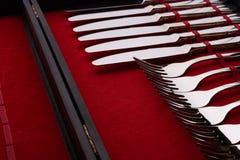 Insieme delle forcelle e dei coltelli in un caso Fotografia Stock Libera da Diritti