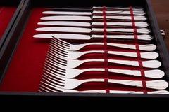 Insieme delle forcelle e dei coltelli in un caso Fotografie Stock Libere da Diritti