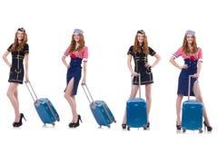 Insieme delle foto con la hostess di viaggio Fotografia Stock Libera da Diritti