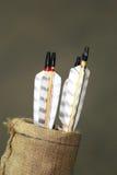 Insieme delle frecce per gli sport di tiro con l'arco Fotografia Stock