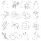 Insieme delle frutta e delle verdure Fotografia Stock Libera da Diritti