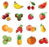Insieme delle frutta e delle verdure illustrazione di stock
