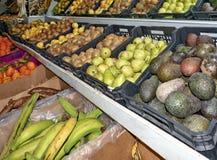 Insieme delle frutta e delle verdure fotografia stock