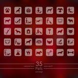 Insieme delle icone degli animali domestici Fotografie Stock
