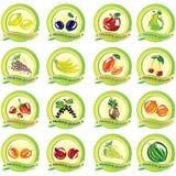 Insieme delle icone della frutta di vettore Immagine Stock