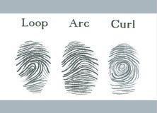 Insieme delle icone delle impronte digitali, impronta digitale di identità di sicurezza di identificazione Illustrazione Fotografie Stock