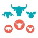 Insieme delle icone piane delle teste degli animali da allevamento Fotografia Stock