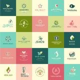 Insieme delle icone piane di bellezza e della natura di progettazione Immagine Stock