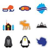 Insieme delle icone piane di web sull'Artide bianca del fondo Fotografia Stock