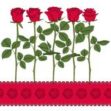 Insieme delle illustrazioni di colore con le rose rosse Oggetti isolati di vettore Immagini Stock Libere da Diritti